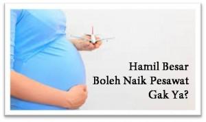 hamil