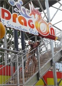 mendaki dragon slide