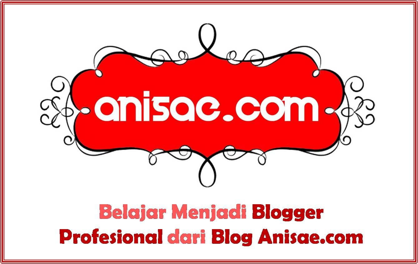 Blogger profesional Anisae