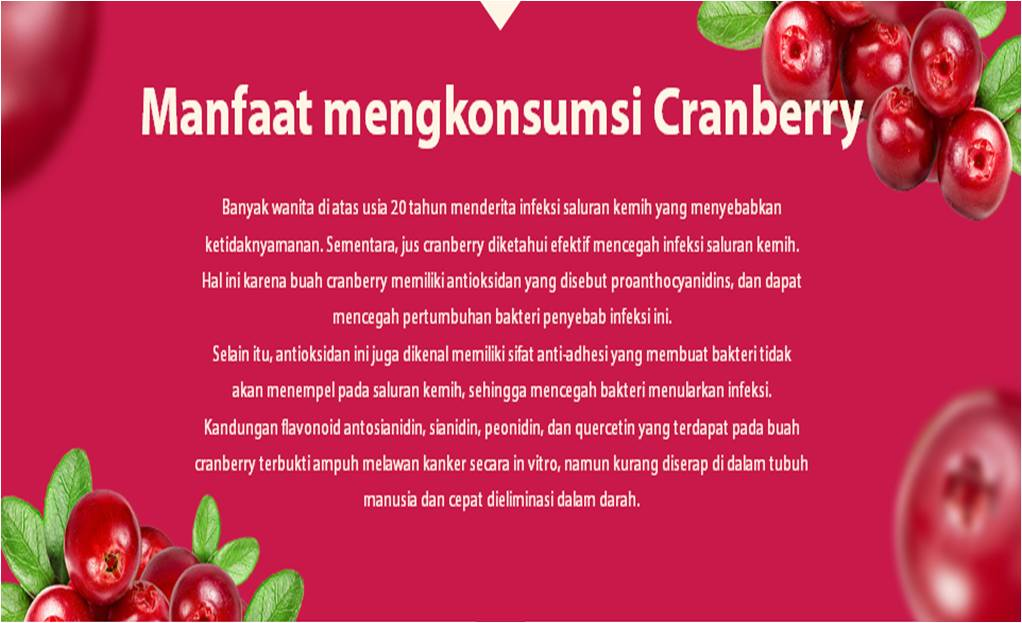 manfaat-cranberry