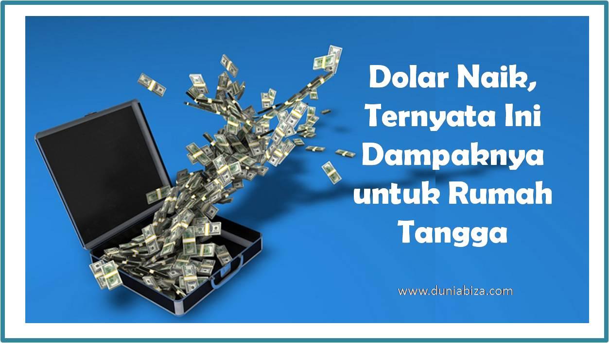 dolar-naik