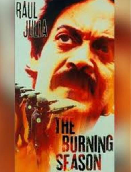 Film The Burning Season